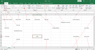 Explore Basic Parts of Microsoft Excel Window